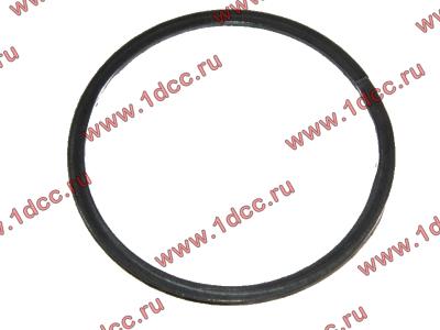 Кольцо уплотнительное выпускного коллектора H2 HOWO (ХОВО) VG260110162 фото 1 Киров