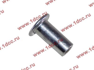 Заклепка алюминиевая 10х24 H2/H3 HOWO (ХОВО) 189000340068 AL фото 1 Киров