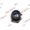 Датчик давления масла H3 HOWO (ХОВО) VG1540090035/1 фото 2 Киров