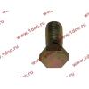 Болт пустотелый М12х1,25 (штуцер топливный) H HOWO (ХОВО) 90003962607 фото 3 Киров