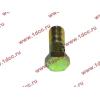 Болт пустотелый М10х1,0 (штуцер топливный) H HOWO (ХОВО) 81500070054 фото 3 Киров